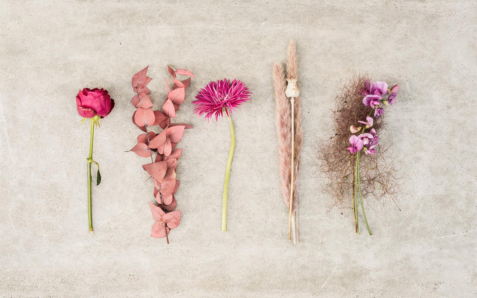 Axel Klodt Flowers